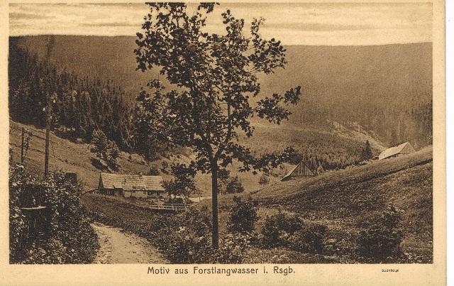 69-Forstlangwasser