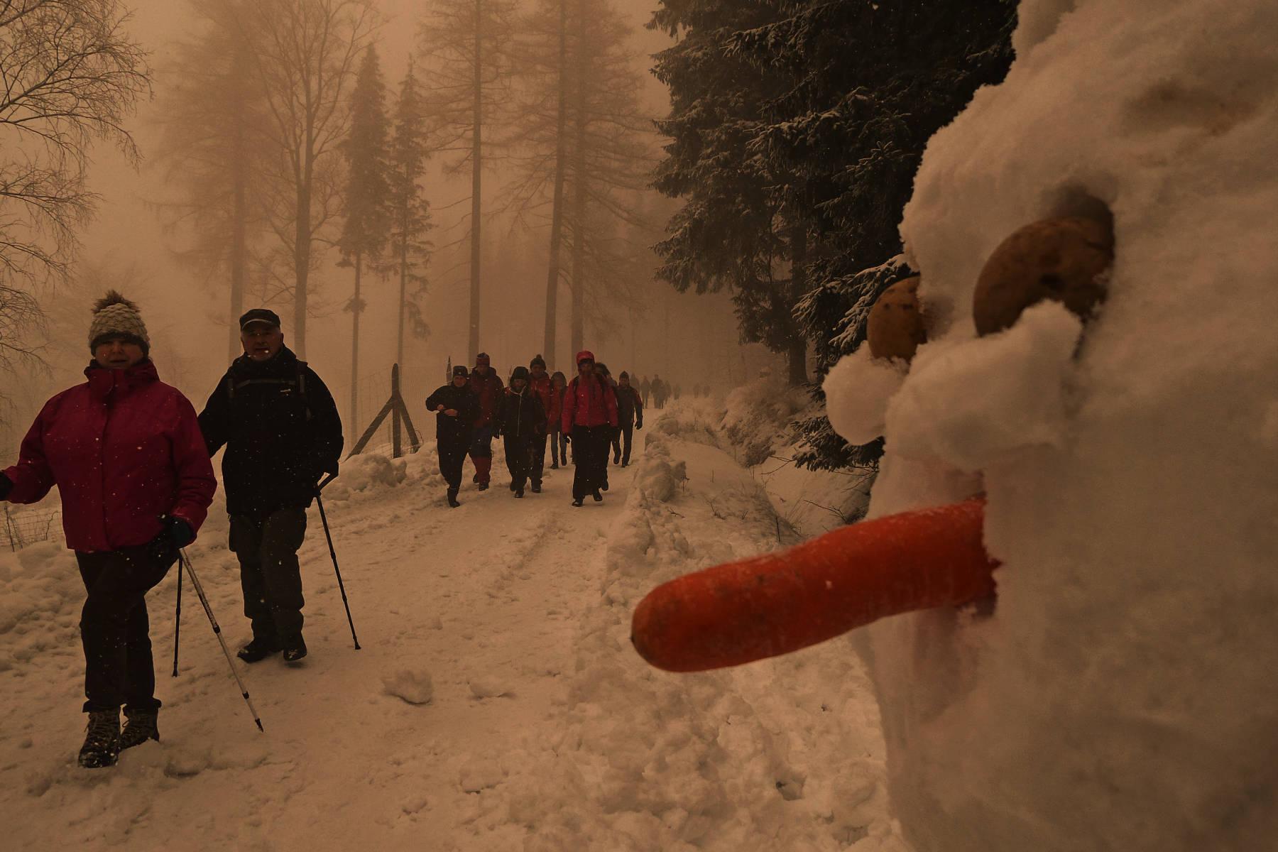 W-drodze-powrotnej-przy-drodze-pojawili_się-śnieżni-strażnicy-1