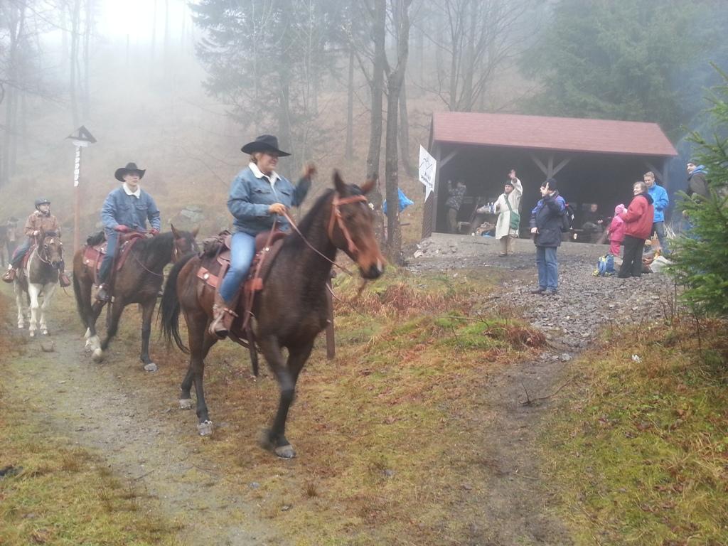 Goście miłośnicy koni
